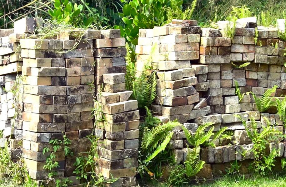 いずれ薪窯を作りたい、とレンガを積み上げています。自然の中のレンガ、雰囲気も素敵です。