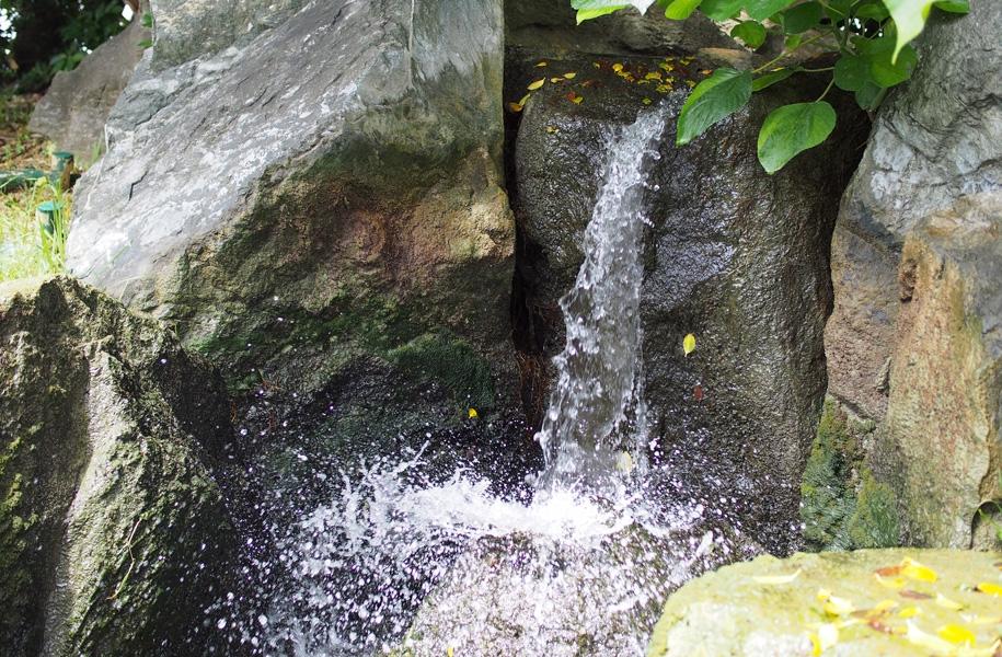 中庭のミニ滝が涼しそうに見えます♪