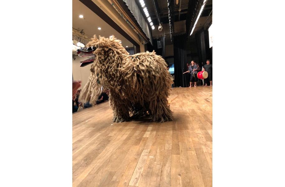 石垣島の祭事には不可欠な獅子も登場!