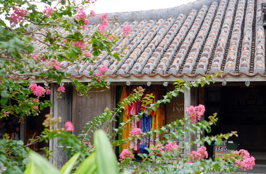 石垣やいま村では国の有形文化財に登録された、昔の建物も見ることができます。