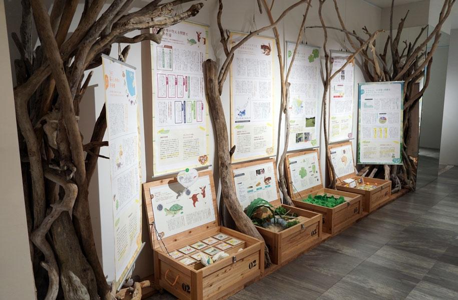 環境省の「外来種移動ミュージアム」がやってきます!「外来種ってなに?」を楽しく学べるミュージアム。お子様とご一緒にご覧ください。