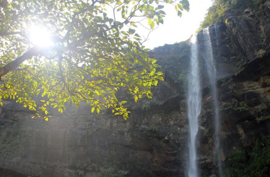 トレッキングなどで滝へ行くツアーも。マイナスイオンをたっぷり浴びられます♪